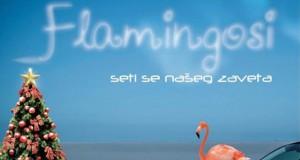 Flamingosi_B_strana